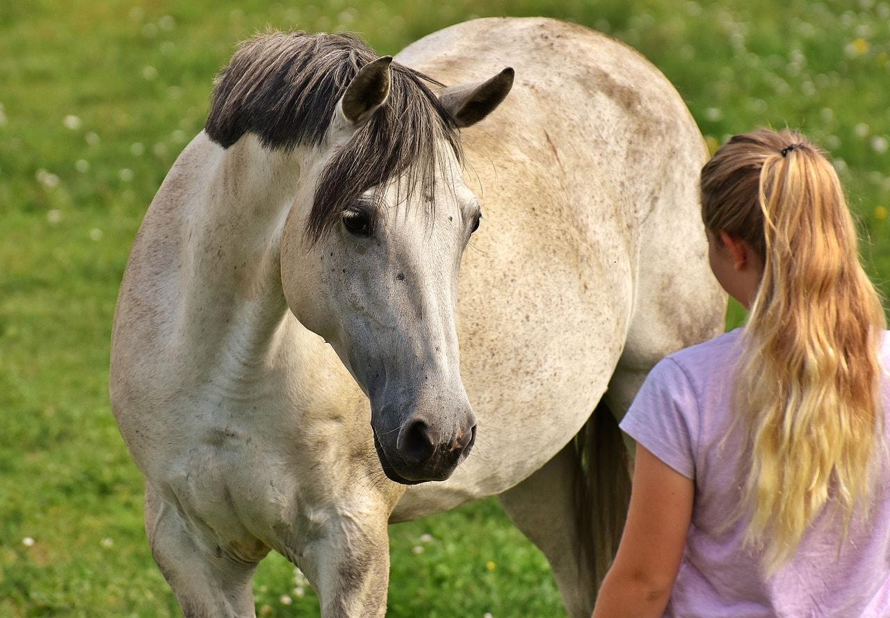Mädchen kommuniziert mit eigenen Pferd