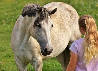 Mädchen kommuniziert mit eigenem Pferd