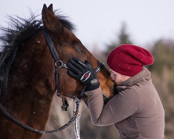 Mädchen küsst ihr erstes eigenes Pferd
