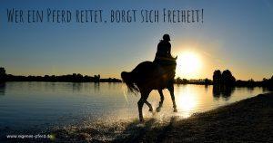 Reiterspruch: Wer ein Pferd reitet, borgt sich Freiheit!